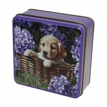 Embossed Puppy in a Basket Tin 100g 12st